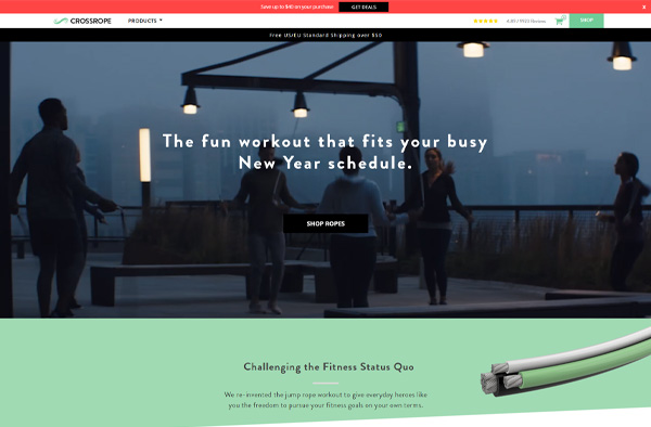Previous Fitness Website Design Example