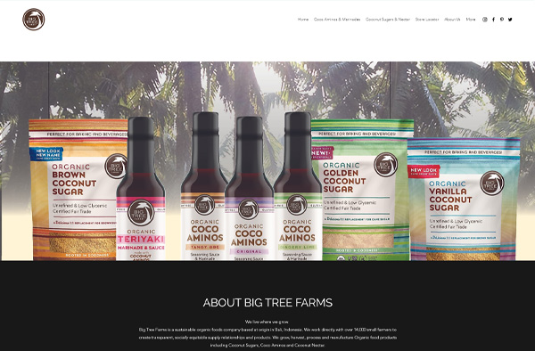Previous Natural Product Store Website Design Example