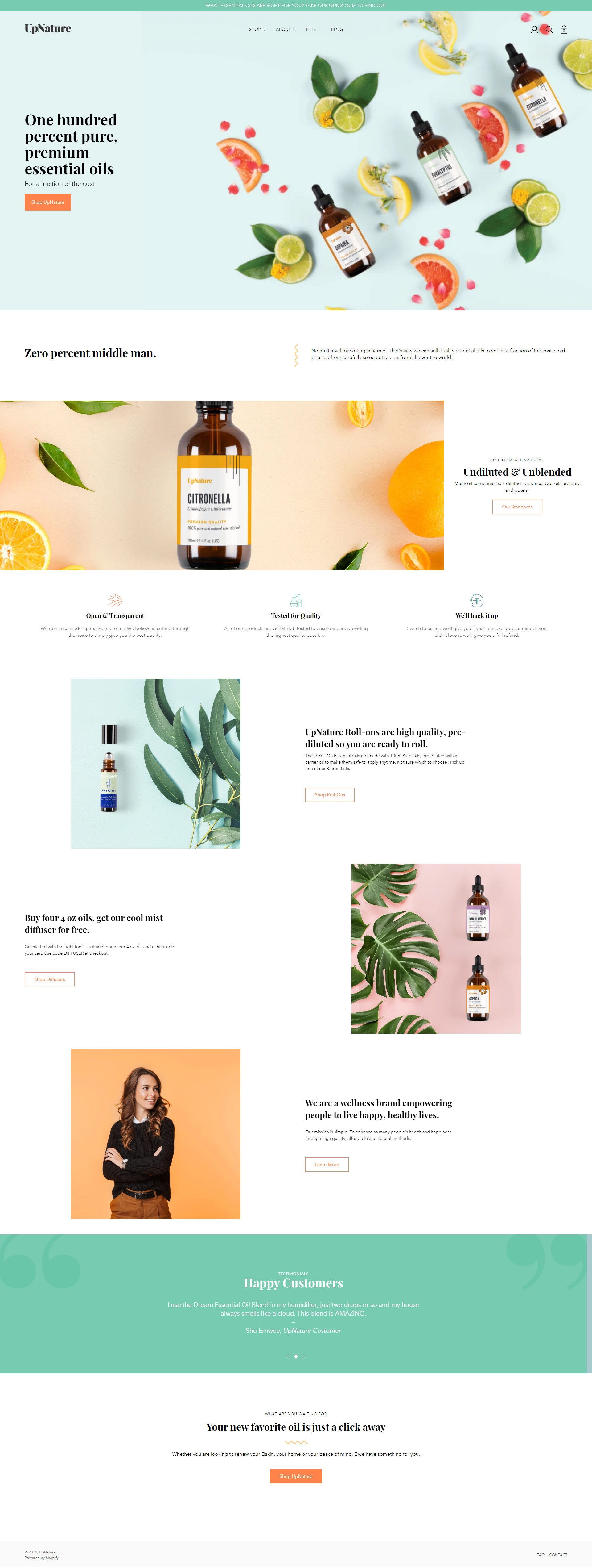 Previous Natural Store Website Design Example