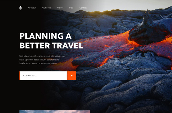 Previous Travel Website Design Example